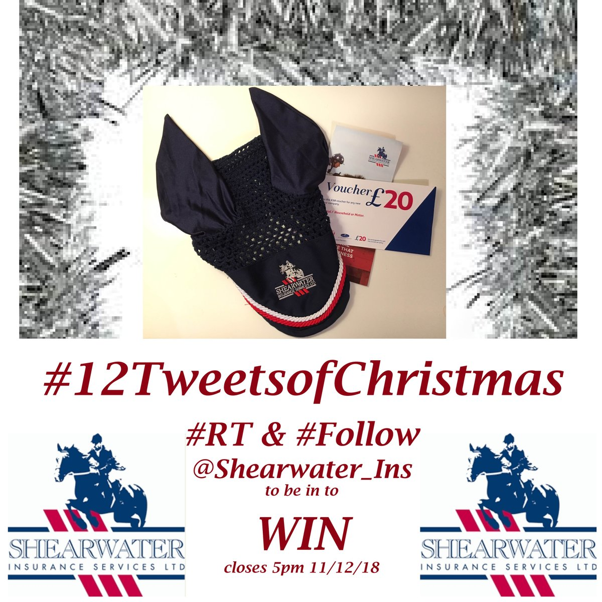 #12TweetsofChristmas FunFact #3: Things you should never do without Insurance  1. Own a horse 2. Go Skydiving 3. Shop in London after December 23rd 4. Meet Donald Trump 5. Offer to be the photographer at Bechers brook 6. Wear sunglasses at night #RT #Folow @Shearwater_Ins  #win