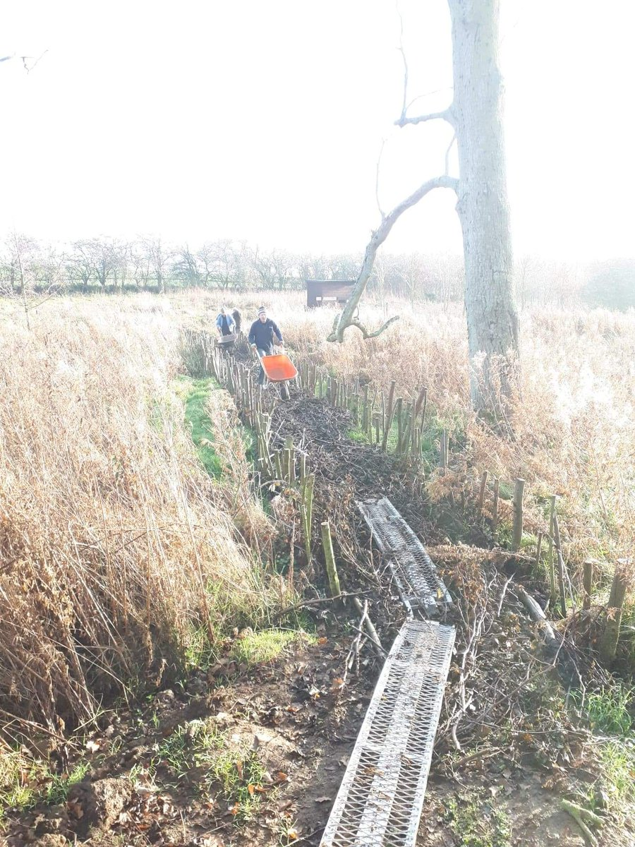 we start by wheeling on barrows of soil recycled from the path works nearby in the park...