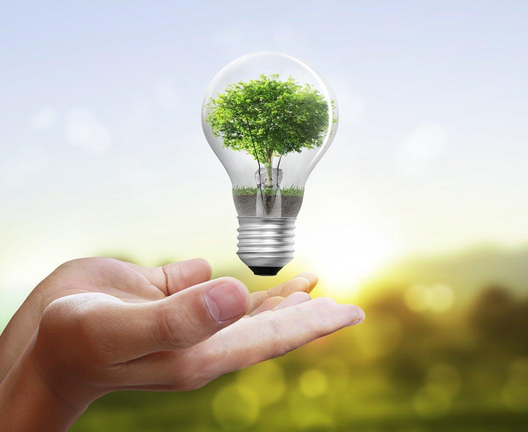 завершился экология и энергосбережение картинки правильно приготовить