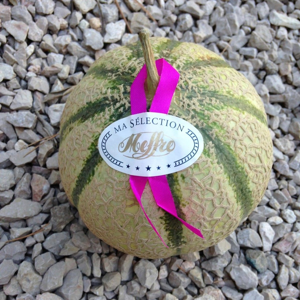 Healthy Living On Twitter Quality Cantaloupe From France Whenever I M On Vacation In Nice France My Daily Grocery Basket Has This Cantaloupe Wellnessya Cantaloupe Melon Fruit Organic Instagood Https T Co Rnpimtreii Cantaloupe melons have a fairly soft exterior skin that can be easily punctured and penetrated. twitter