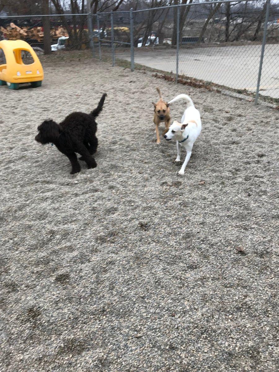 Dakota and Zoe J. race with Emmet