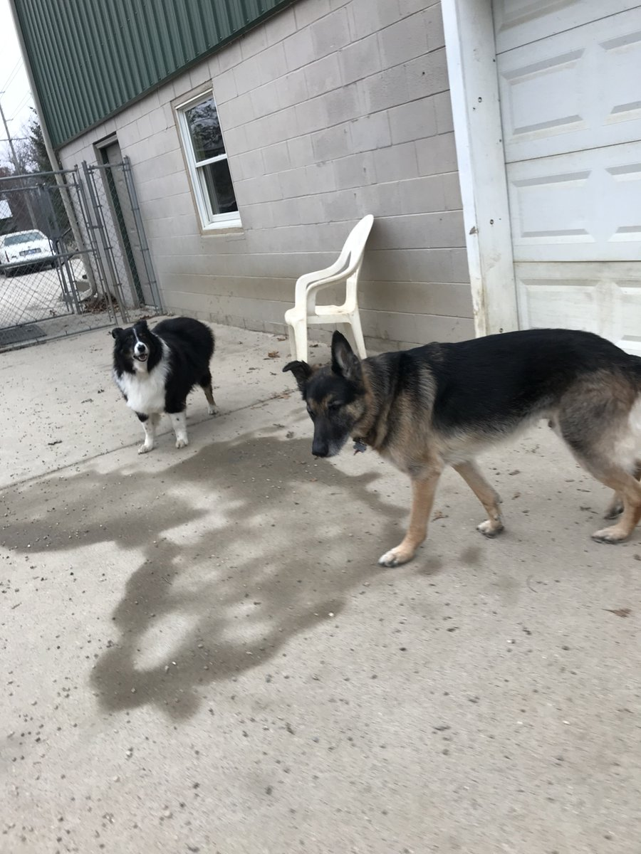 Minnie and Koda G. pose for a picture