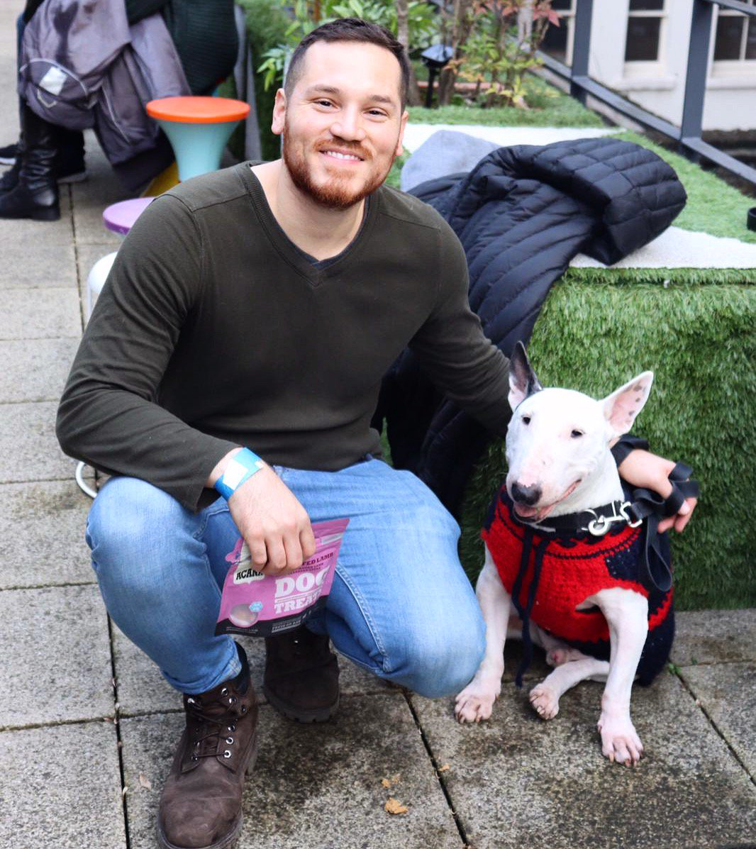 Squeezing every last inch of the London sunshine (it was  )at the rooftop of the London Dogs of Instagram event! . . . #DogsOfTwitter #dogsofinsta #dogs #dog #puppers #puppy #dogsofinstagram #bullterrier #bullterriers #bullies<br>http://pic.twitter.com/GOB3yjWtLJ