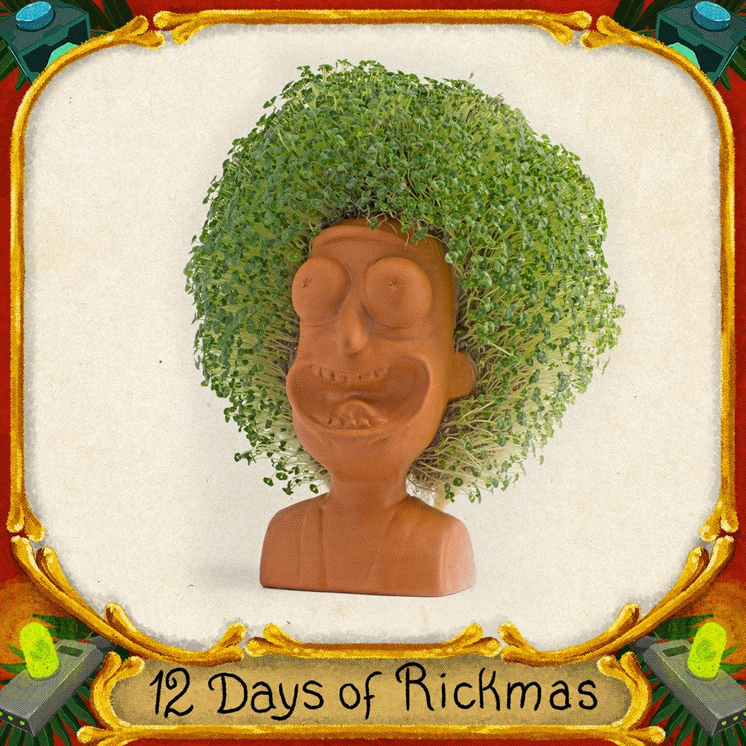 This should be easy to keep alive. Follow @rickmobile for gift ideas #RickandMorty #12daysofrickmas @ChiaPetOfficial