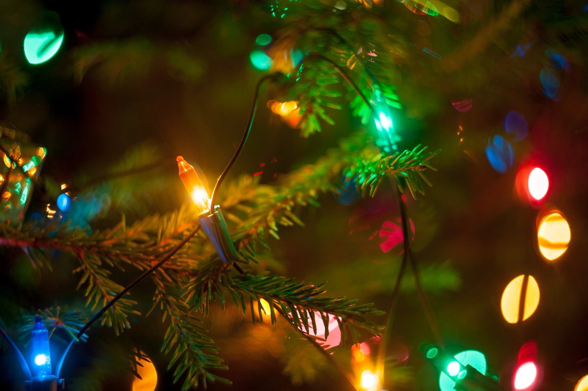 Don't string Christmas lights or electrical leads on or near overhead powerlines. Read more https://t.co/nZjOTf6uXa https://t.co/15iK3BDcvi