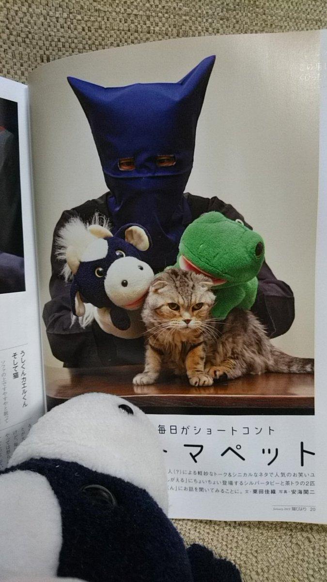 本日発売の『猫びより』1月号に、パペ家の猫たちが載っております! カラー4ページ丸々パペ家ですよ。 うしとカエルの後ろに変なのが写りこんでいるとかはきっと気のせい。 #うしです #ねこ