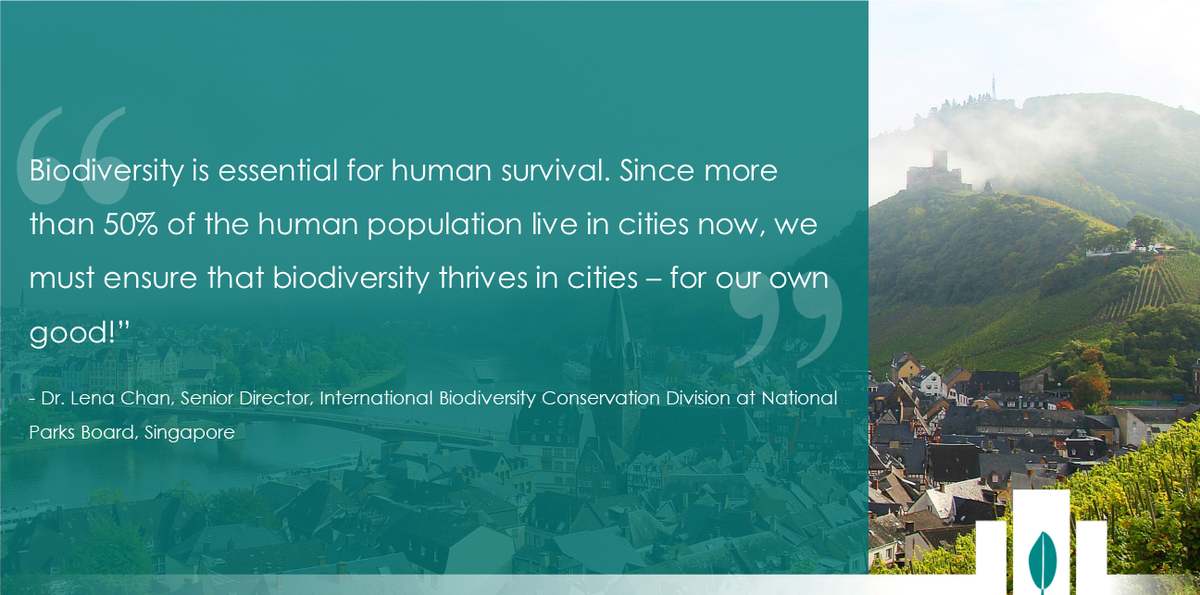 """#Biodiversity is essential for human survival.  More than 50% of humans live in #cities now, we must ensure that biodiversity thrives in cities – for our own good!""  - Dr. Lena Chan (@nparksbuzz)   Featured on #CitiesWithNature: https://t.co/lIA91a1GZI @CitiesWNature #nature"