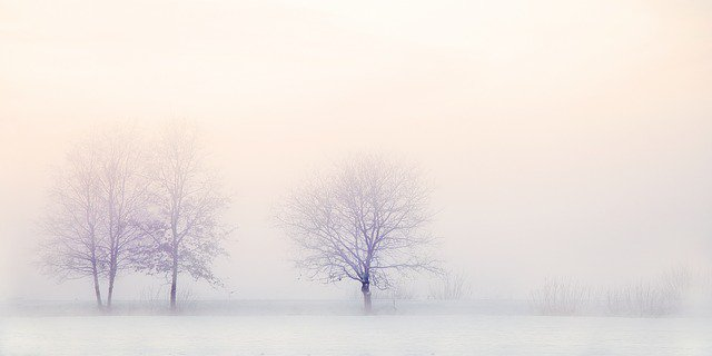 'That's what winter is: an exercise in remembering how to still yourself then how to come pliantly back to life again.' Winter by Ali Smith #WednesdayWisdom Photo