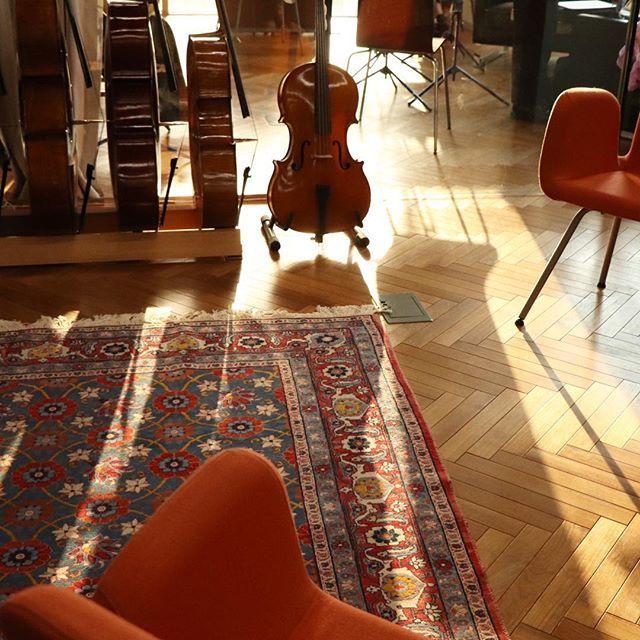 1/4チェロに後光が!🌞冬の日差しですね🍁  #cello #1/4 #old #french #violinshop #latelierbyapc #shibuya #tokyo https://ift.tt/2rzxc5A
