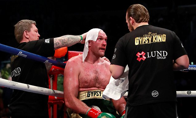 Freddie Roach believes Tyson Fury could have knocked Deontay Wilder out with better advice dlvr.it/QtRJ9N