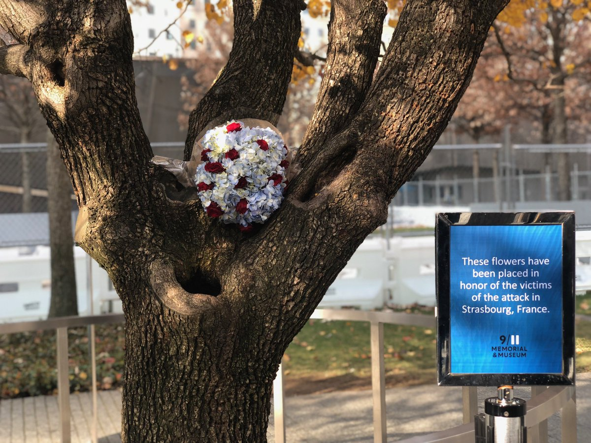 Flowers were placed at the Survivor Tree in honor of the victims of the attack in Strasbourg, France. #Strasbourg #911Memorial #SurvivorTree