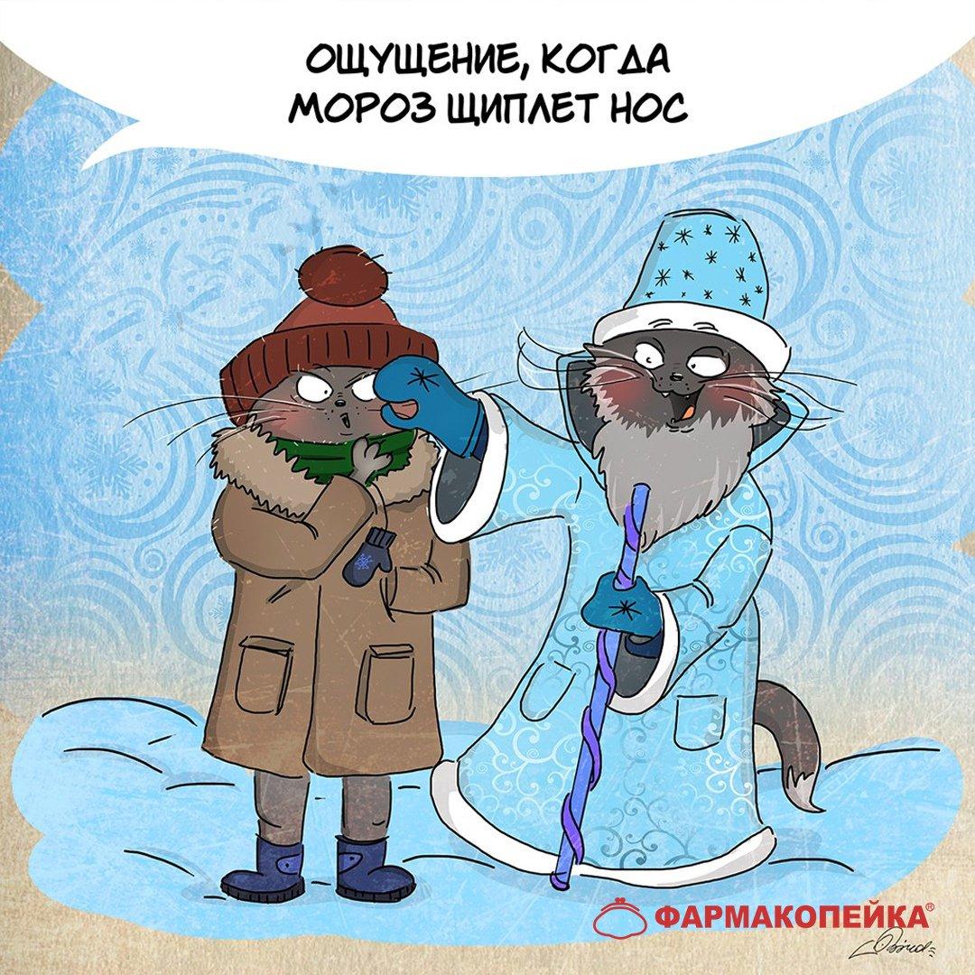 Картинка мороз прикольные