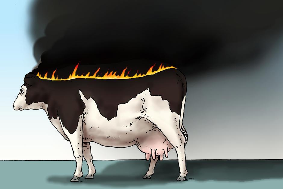 Réduire sa consommation de viande, indispensable pour la planète https://t.co/HPtuKCWZIW #Vegan #Végétarien #environnement #Vege