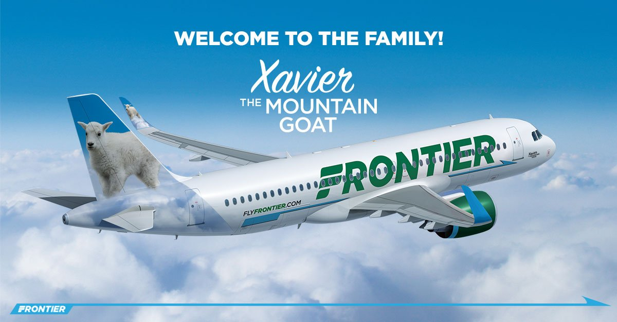frontier airlines on twitter just shy of their two year birthday you can tell the age of a mountain goat by counting the rings on their horns welcome xavier the mountain goat frontier airlines on twitter just shy