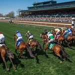 Image for the Tweet beginning: .@Keeneland adds two turf sprint