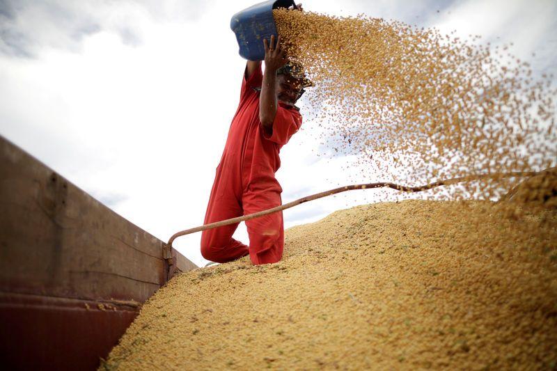 China makes first major buy of U.S. soybeans since Trump-Xi meet https://t.co/9PL9HWt7CV