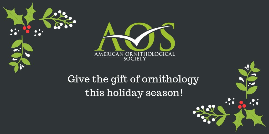 Did you know you can purchase a gift AOS membership for your favorite bird lover this Christmas? Log in to the Member Portal at osnabirds.org and click on the Online Store tab!