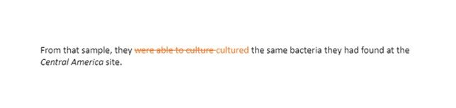 American Culture in the 1970s