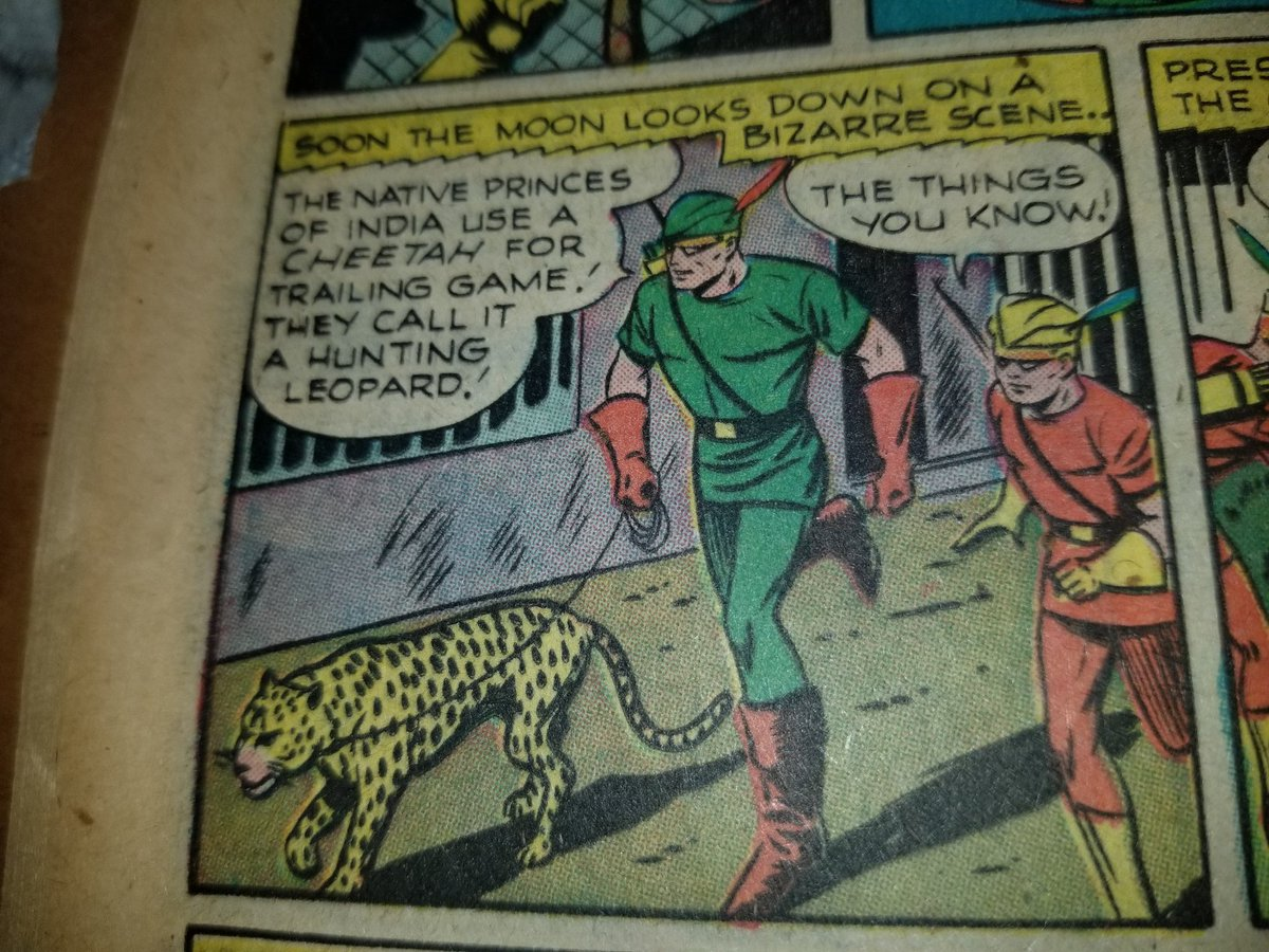 Green Arrow just borrows a cheetah from the zoo, slaps a leash on it, and uses it as a bloodhound. <br>http://pic.twitter.com/Z2Rl2x6h3N