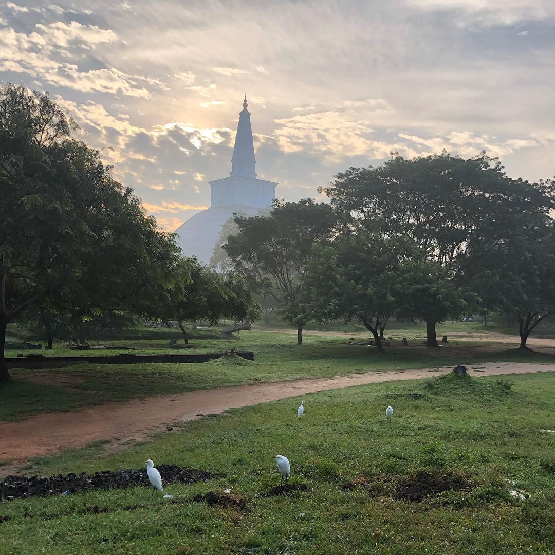 Twitter Anuradapura On Twitter On Hashtag Hashtag Anuradapura Twitter Anuradapura Hashtag Anuradapura Anuradapura On Hashtag On Twitter 17wqpA