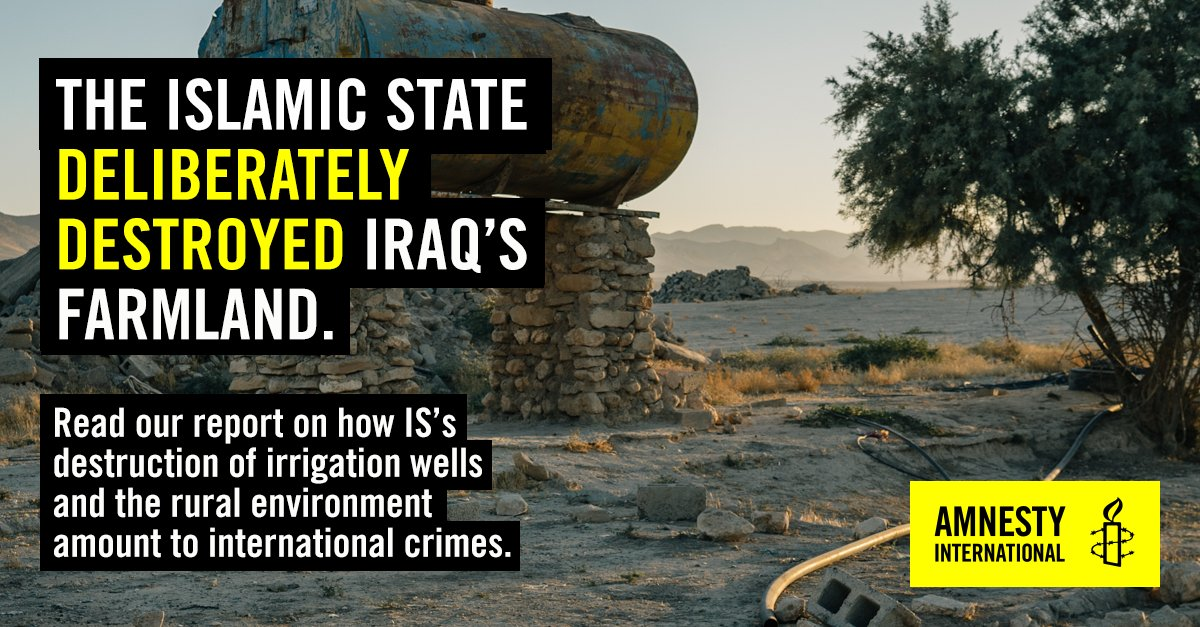 Looking beyond the urban areas of #Iraq to examine the rights violations, disruption to livelihoods and environmental damage caused by IS is vital for its future security. Its scorched earth policies were not limited to Iraq's oil fields, they extended to agricultural areas.