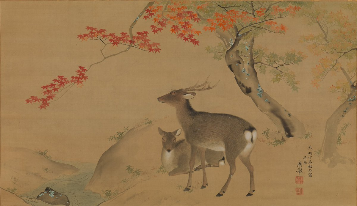 Painting blossomed in Japan during the Edo period (1615–1868) as artists daringly experimented with conventional styles. Discover more than 40 examples in #PoetryofNature, on view through January 21: https://t.co/kvNTAwQiEd.