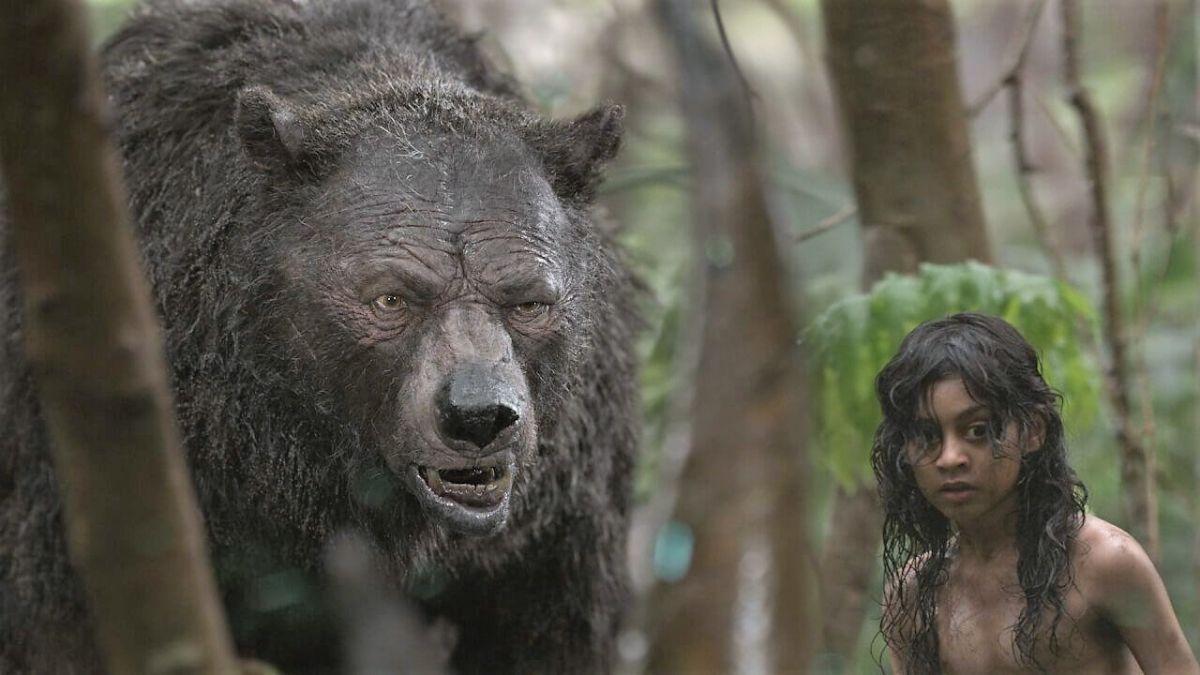 Drilled buff bear came