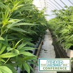 Ready to create the future?   The Hemp Biz Conference is the place to meet venture capitalists, angel investors and private equity investors who are hungry for equity-generating opportunities to feed their deal flow.  . . . #hempoil #hempcbd #hempfood #hempplastic #hempbizcon