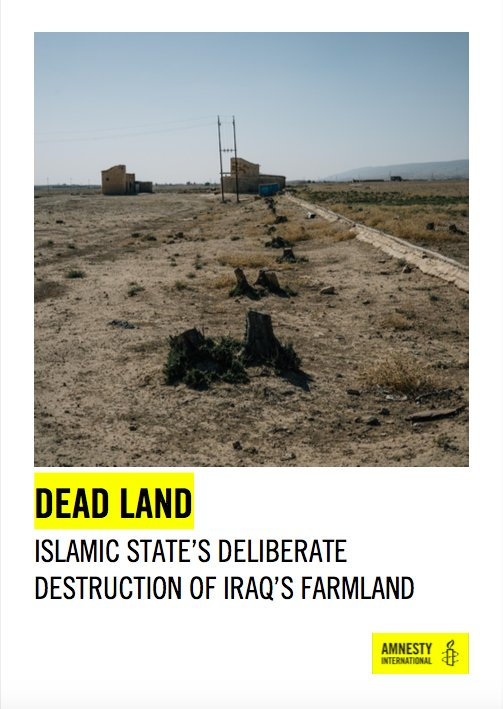 Further observations building on @amnesty's report yesterday on the legacy of IS's policies in rural #Iraq.