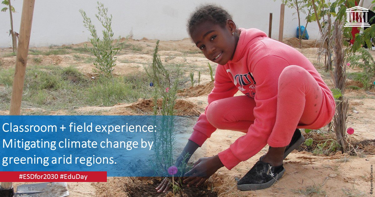 Something old, something new...the spirit of #COP24 and #EduDay is innovation. Regreening Tunisia one tree at a time proves it. https://t.co/bVMpe5TNH5