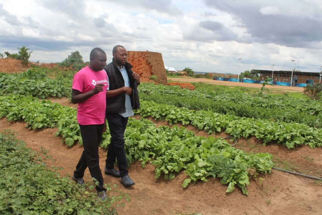 test Twitter Media - We were pleased to guide Serge from the Lion's Club Amani in Lubumbashi around #KFFH and look forward to his return visit with city youths, and 100 trees for planting. @nshimbaelvis  #agriculture #DRCongo https://t.co/Yij6sOTdgd