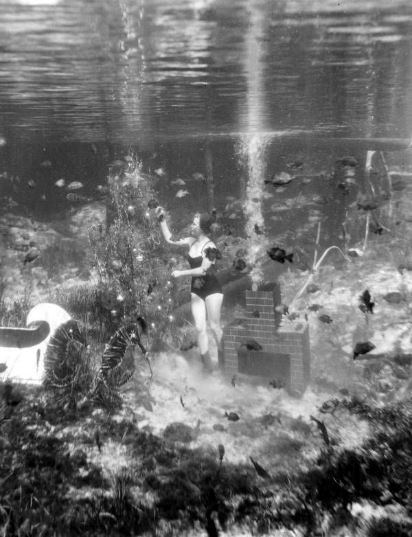 Underwater Christmas at Rainbow Springs, Florida, 1953 gameraboy1.tumblr.com/post/181061617…