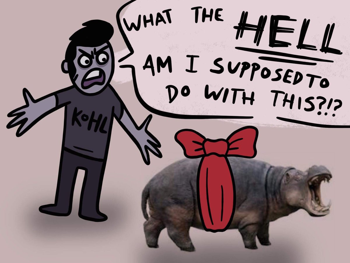All I Want For Christmas Is A Hippopotamus.Nicole Hardy On Twitter I Ve Always Wanted A House Hippo