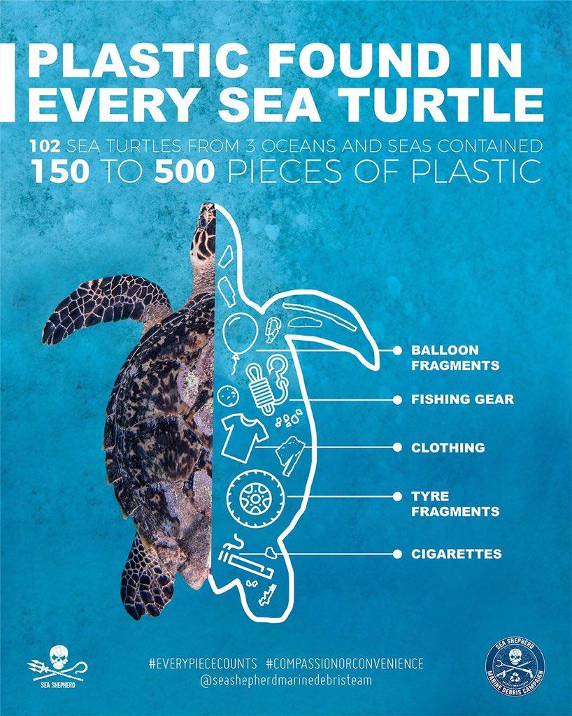 EU officials agree to ban single-use plastics