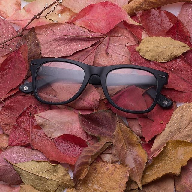 6ad991a142e4 Stocking up on fall basics ♥ 👓Muse M Classic  GlassesUSA  glasses