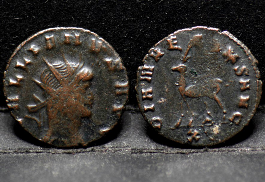 Quincampois Numis's photo on #romaine