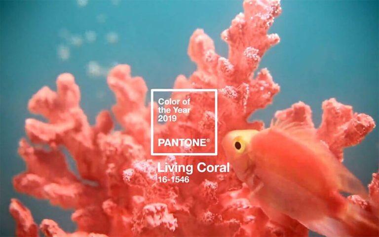 色見本で有名なPANTONE(パントン)が、次の年のテーマカラーとなる「カラー・オブ・ザ・イヤー」を発表。2019年のテーマカラーが「リビング・コーラル(Living Coral)」ですって! こんな色のセーターかブラウスがほしい。顔まわりが華やかに見えそう✨