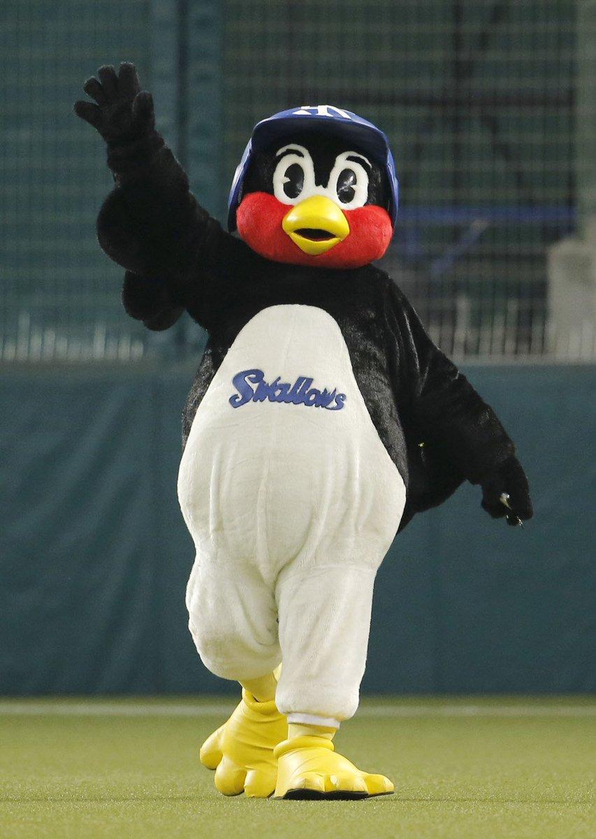 今日は #南極の日 ❄☃  ずんぐりとした体格からペンギン🐧に例えられる東京ヤクルトの #つば九郎 ☂ 腹黒いキャラやフリップ芸が持ち味😝 来年はどんな芸でスタジアムを盛り上げてくれるのでしょうか⁉  #スワローズ #swallows #npb (写真は共同)