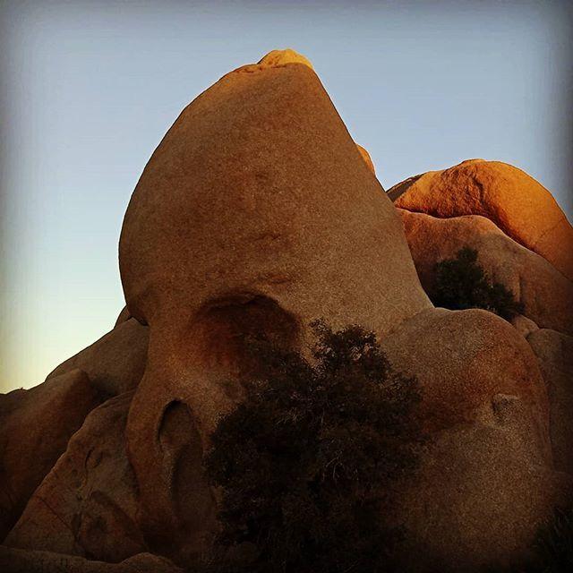 Kristina Dc Hoeppner On Twitter Skull Rock In All Its