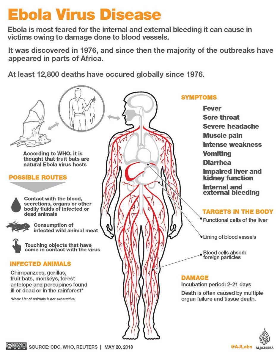 What is Ebola? https://t.co/cUpRuTzGZD