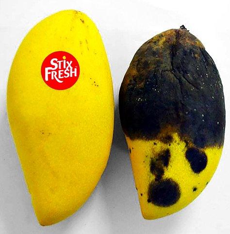 ...  antigaspi  innovation http   actualites.reponse-conso.fr stixfresh-letiquette-qui-prolonge-la-duree-de-vie-des-fruits   …pic.twitter.com lp1kYnzrOE 0795b55fb35