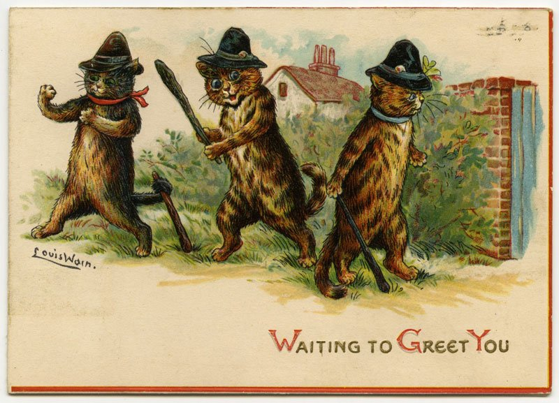 Waiting to greet you Nothing says Merry Christmas like a pack of criminal cats lying in wait to ambush an unsuspecting victim... #FridayFeeling #Christmas