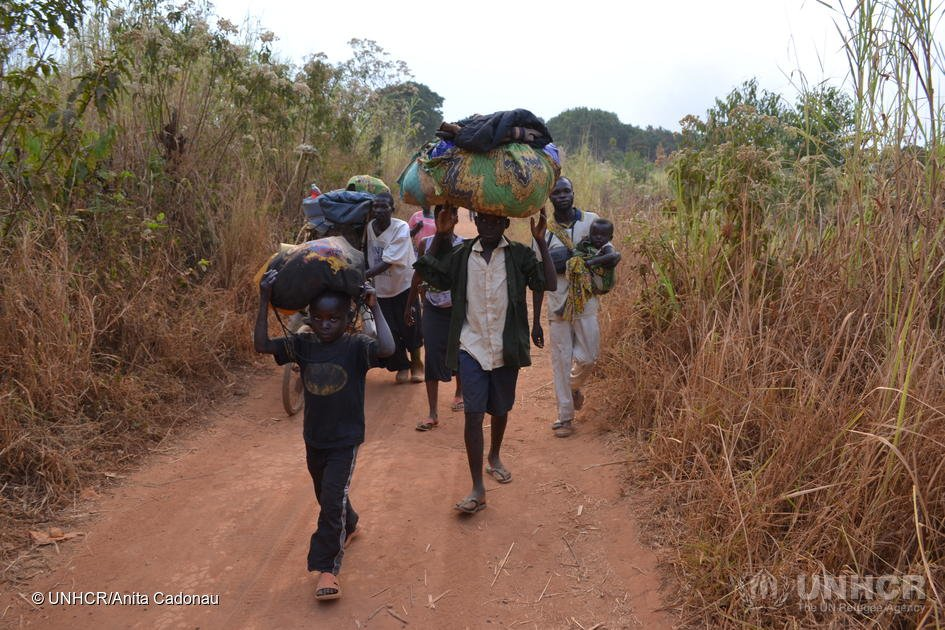 UNHCR is extremely concerned at the large number of people left homeless by fighting in the Democratic Republic of Congo (DRC)