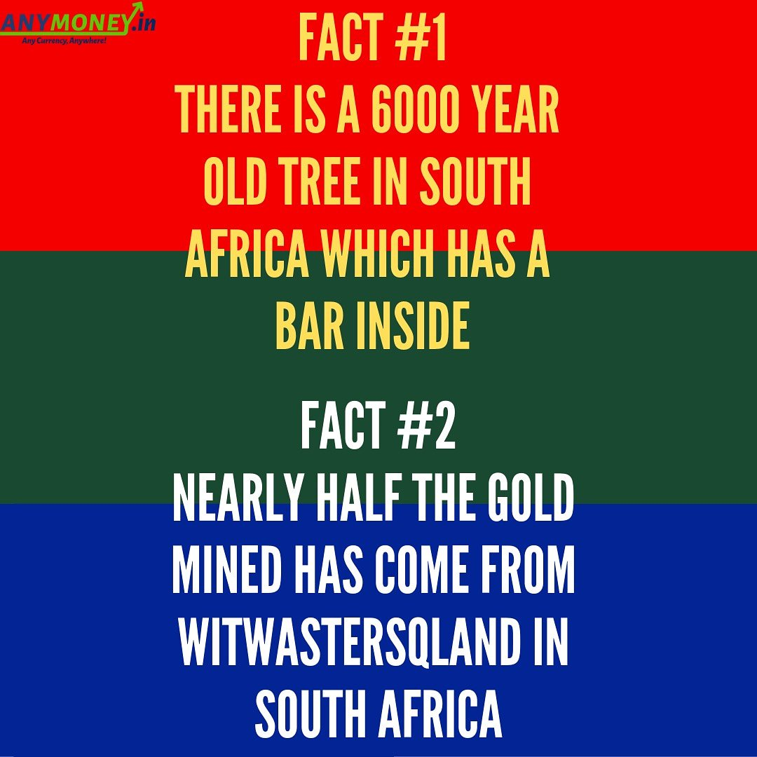 southafricafacts hashtag on Twitter