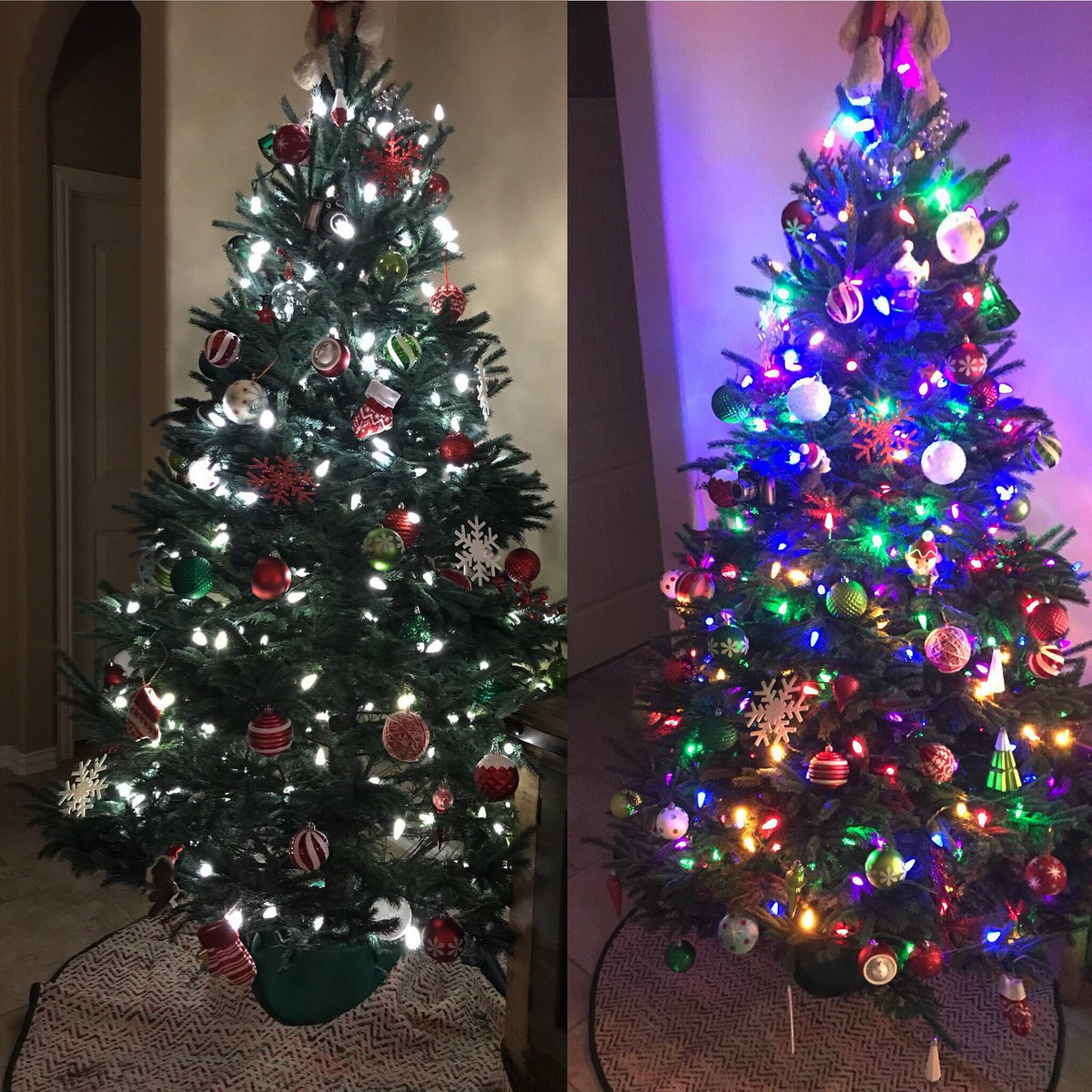 The great debate! White lights or multicolored? #khou11 #htownrush