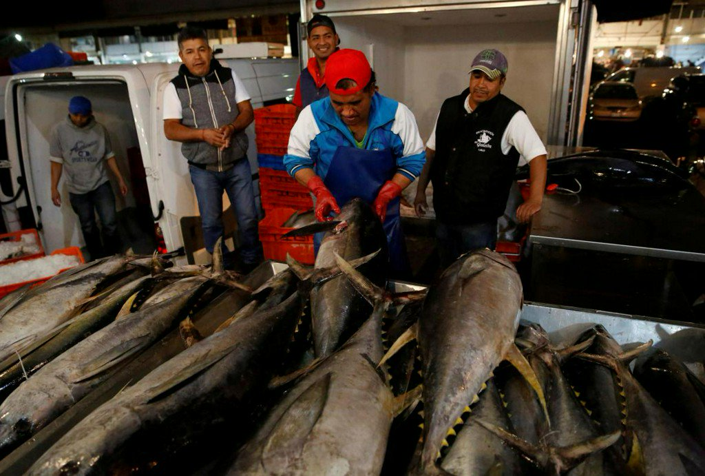 Mexico loses ten-year WTO battle over U.S. tuna labeling https://t.co/IAxzWhV1Dz