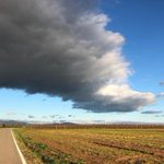 Image for the Tweet beginning: Cels d'Empordà #Garrigàs