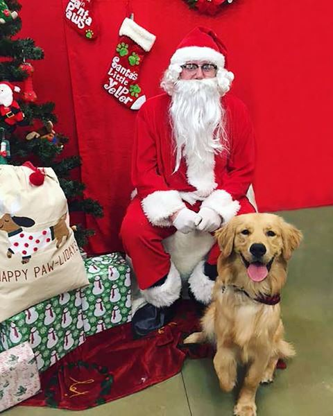 Petsmart Christmas Hours.Petsmart On Twitter Santa Photo Days Continues Today Stop