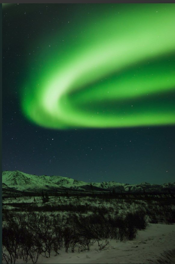 RT @usembthehague: It's the season for long nights and northern lights @DenaliNPS in Alaska. #FindYourPark @VisitTheUSA https://t.co/y3B4OtbtZw