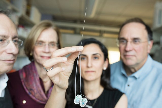 No. 17. Ultrathin needle can deliver drugs directly to the brain https://t.co/sJwRmQEA63 #TopMITtweets